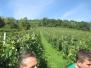Visita in cantina Tre Monti
